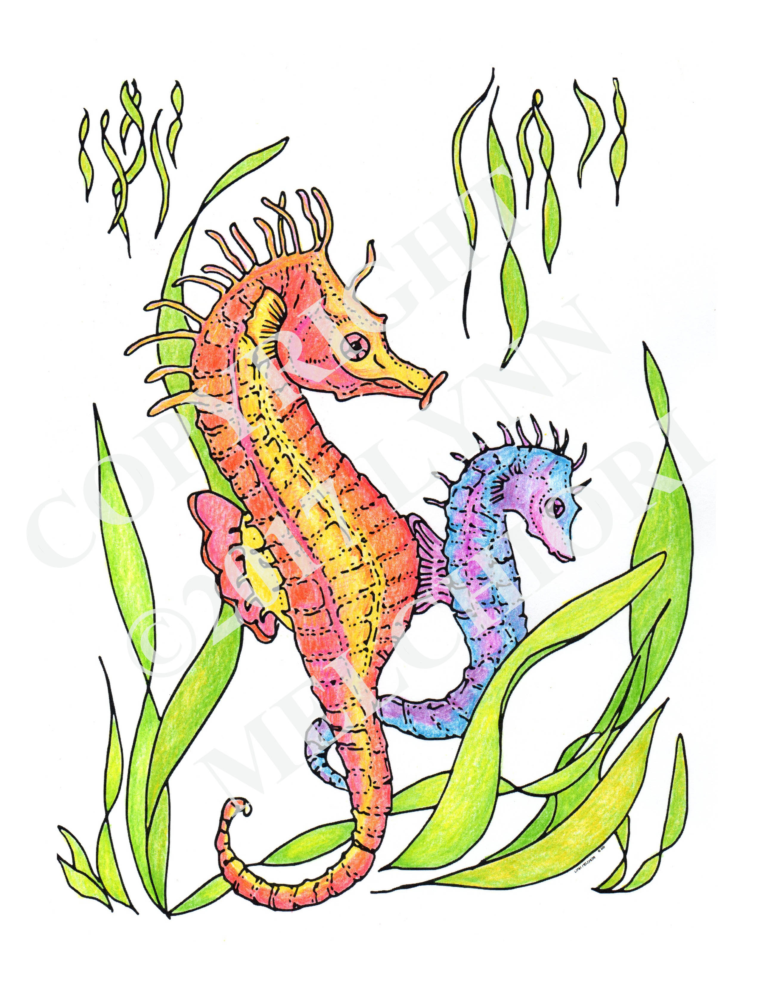 Drawing of 2 seahorses, colored in with colored pencils.  From the Sea & Shore coloring book.
